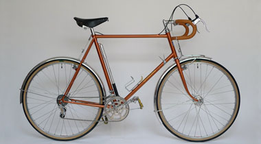 Type V/ 650B Randonneur/ Mr.Ueno from Kyoto/ 2011.1.9