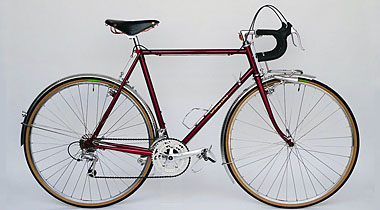 Type E/ 700C Randonneur/ Mr.Sakou from Kyoto/ 2012.7.23