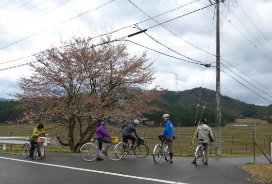 150425_koshihata_7