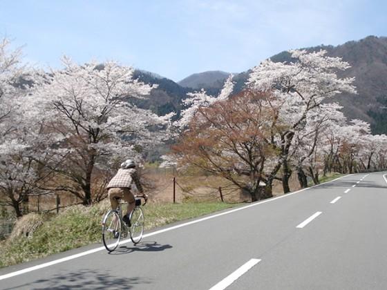 ランドナーとは:日本の旅(春)